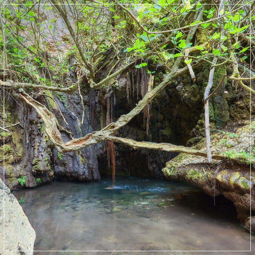 baths of afrodite cyprus